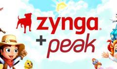 peak-zynga