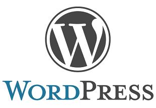 WordPress ile E-Ticaret Sayfası Geliştirme